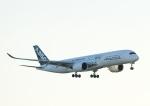 じーく。さんが、羽田空港で撮影したエアバス A350-941XWBの航空フォト(写真)
