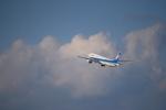 taku1222さんが、羽田空港で撮影した全日空 777-281の航空フォト(写真)