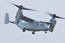 Triton-Blueさんが、霞目駐屯地で撮影したアメリカ海兵隊 MV-22Bの航空フォト(飛行機 写真・画像)