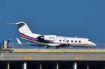 パンダさんが、羽田空港で撮影したJET SHOE LLC G-IVの航空フォト(写真)