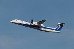 くるくもるさんが、新千歳空港で撮影したANAウイングス DHC-8-402Q Dash 8の航空フォト(写真)