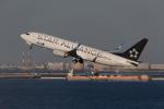 くるくもるさんが、羽田空港で撮影した全日空 737-881の航空フォト(写真)