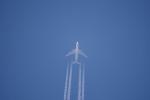 Dojalanaさんが、函館空港で撮影した大韓航空 747-4B5の航空フォト(写真)