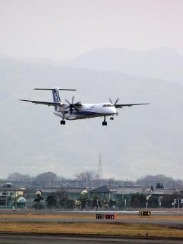 なまくら はげるさんが、松山空港で撮影した全日空 DHC-8-402Q Dash 8の航空フォト(飛行機 写真・画像)
