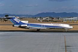 名古屋飛行場 - Nagoya Airport [NKM/RJNA]で撮影された全日空 - All Nippon Airways [NH/ANA]の航空機写真