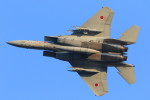 take_2014さんが、茨城空港で撮影した航空自衛隊 F-15J Eagleの航空フォト(写真)