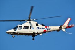 Dojalanaさんが、函館空港で撮影した鹿児島国際航空 A109E Powerの航空フォト(飛行機 写真・画像)