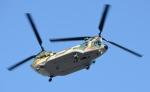 青い翼に鎧武者マークの!さんが、市ヶ谷地区で撮影した航空自衛隊 CH-47J/LRの航空フォト(写真)