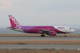 turt@かめちゃんさんが、関西国際空港で撮影したピーチ A320-214の航空フォト(写真)