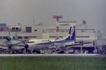Hitsujiさんが、福岡空港で撮影したエアーニッポン YS-11A-213の航空フォト(写真)