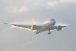 さくらの城南山。さんが、成田国際空港で撮影したタイ国際航空 787-8 Dreamlinerの航空フォト(飛行機 写真・画像)