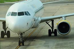 gomaさんが、メノルカ空港で撮影したブエリング航空 A320-214の航空フォト(飛行機 写真・画像)
