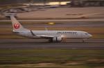 アイスコーヒーさんが、羽田空港で撮影した日本航空 737-846の航空フォト(写真)