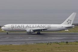 航空フォト:OE-LAZ オーストリア航空 767-300