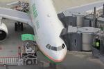 ふじいあきらさんが、羽田空港で撮影したエバー航空 A330-203の航空フォト(写真)