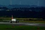 rjnsphotoclub-No.07さんが、静岡空港で撮影したアシアナ航空 A320-232の航空フォト(写真)