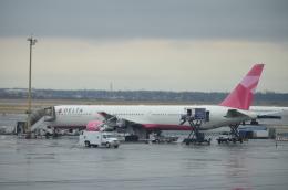 チョロ太さんが、ジョン・F・ケネディ国際空港で撮影したデルタ航空 767-432/ERの航空フォト(飛行機 写真・画像)