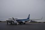 ガスパールさんが、大島空港で撮影した全日空 737-781の航空フォト(写真)