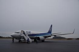 ガスパールさんが、大島空港で撮影した全日空 737-781の航空フォト(飛行機 写真・画像)