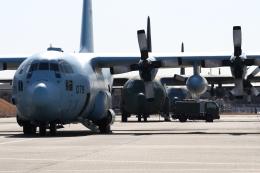さんたまるたさんが、名古屋飛行場で撮影した航空自衛隊 C-130H Herculesの航空フォト(飛行機 写真・画像)