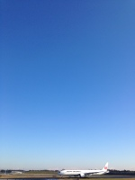 hkg blue skyさんが、成田国際空港で撮影した日本航空 777-346/ERの航空フォト(写真)