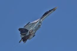 TAOTAOさんが、珠海金湾空港で撮影したロシア空軍 Su-37の航空フォト(飛行機 写真・画像)