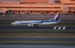 uhfxさんが、羽田空港で撮影した全日空 737-881の航空フォト(写真)