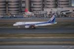 uhfxさんが、羽田空港で撮影した全日空 A320-211の航空フォト(写真)