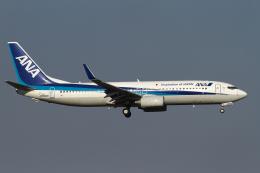 hiko_chunenさんが、成田国際空港で撮影した全日空 737-881の航空フォト(飛行機 写真・画像)