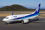 グリスさんが、大島空港で撮影した全日空 737-781の航空フォト(写真)