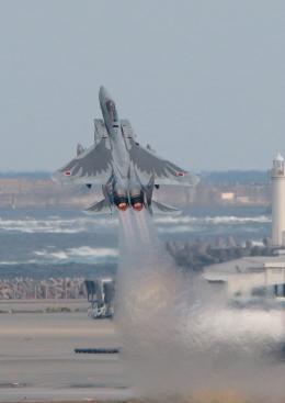 虎太郎19さんが、那覇空港で撮影した航空自衛隊 F-15J Eagleの航空フォト(写真)
