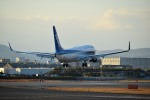 tsubasa0624さんが、伊丹空港で撮影した全日空 737-881の航空フォト(飛行機 写真・画像)