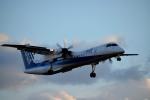 tsubasa0624さんが、伊丹空港で撮影したANAウイングス DHC-8-402Q Dash 8の航空フォト(飛行機 写真・画像)