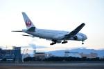 tsubasa0624さんが、伊丹空港で撮影した日本航空 777-246の航空フォト(写真)