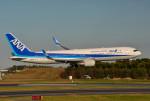 さくらの城南山。さんが、成田国際空港で撮影した全日空 767-381/ERの航空フォト(写真)