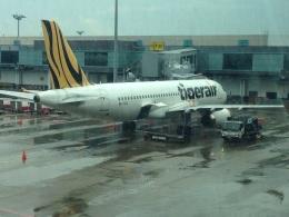AIR JAPONさんが、シンガポール・チャンギ国際空港で撮影したタイガーエア A320-232の航空フォト(飛行機 写真・画像)