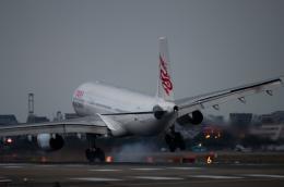 tsuna72さんが、福岡空港で撮影した香港ドラゴン航空 A330-342の航空フォト(写真)