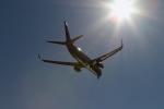 kuxiuxingさんが、羽田空港で撮影した全日空 737-881の航空フォト(写真)