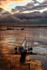 中部国際空港 - Chubu Centrair International Airport [NGO/RJGG]で撮影されたアシアナ航空 - Asiana Airlines [OZ/AAR]の航空機写真