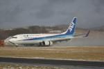 Tomochanさんが、函館空港で撮影した全日空 737-881の航空フォト(写真)