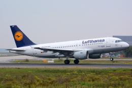 航空フォト:D-AIBF ルフトハンザドイツ航空 A319
