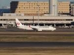 ポカール長田さんが、羽田空港で撮影した日本航空 737-846の航空フォト(写真)