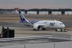 uhfxさんが、成田国際空港で撮影した全日空 787-8 Dreamlinerの航空フォト(写真)