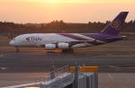 uhfxさんが、成田国際空港で撮影したタイ国際航空 A380-841の航空フォト(飛行機 写真・画像)