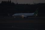 uhfxさんが、成田国際空港で撮影した春秋航空日本 737-86Nの航空フォト(飛行機 写真・画像)
