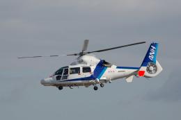 chalk2さんが、名古屋飛行場で撮影したオールニッポンヘリコプター AS365N2 Dauphin 2の航空フォト(写真)