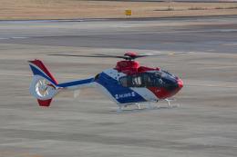 chalk2さんが、名古屋飛行場で撮影した毎日新聞社 EC135T1の航空フォト(写真)