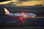 tsubasa0624さんが、羽田空港で撮影した日本航空 737-846の航空フォト(飛行機 写真・画像)
