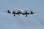 xxxxxzさんが、厚木飛行場で撮影した海上自衛隊 UP-3Cの航空フォト(飛行機 写真・画像)