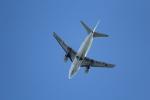 ANA744Foreverさんが、羽田空港で撮影したAIR DO 737-54Kの航空フォト(写真)